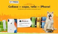 Акция корм PROBALANCE- Собаке корм – тебе iPhone!